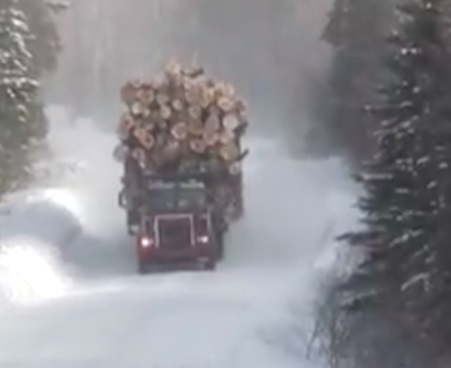 Check Out This Maine Logging Truck Stacked To The Rafters!
