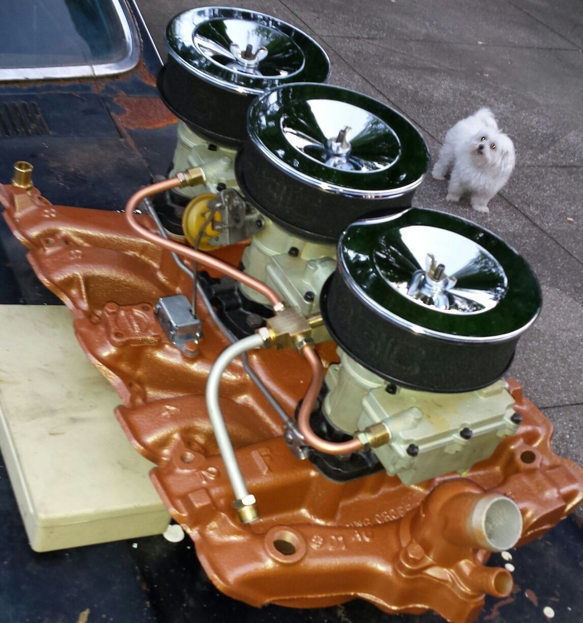 Rare Olds Stuff: This Short Run 1966 Only L69 Tri-Carb Olds Intake And Carbs