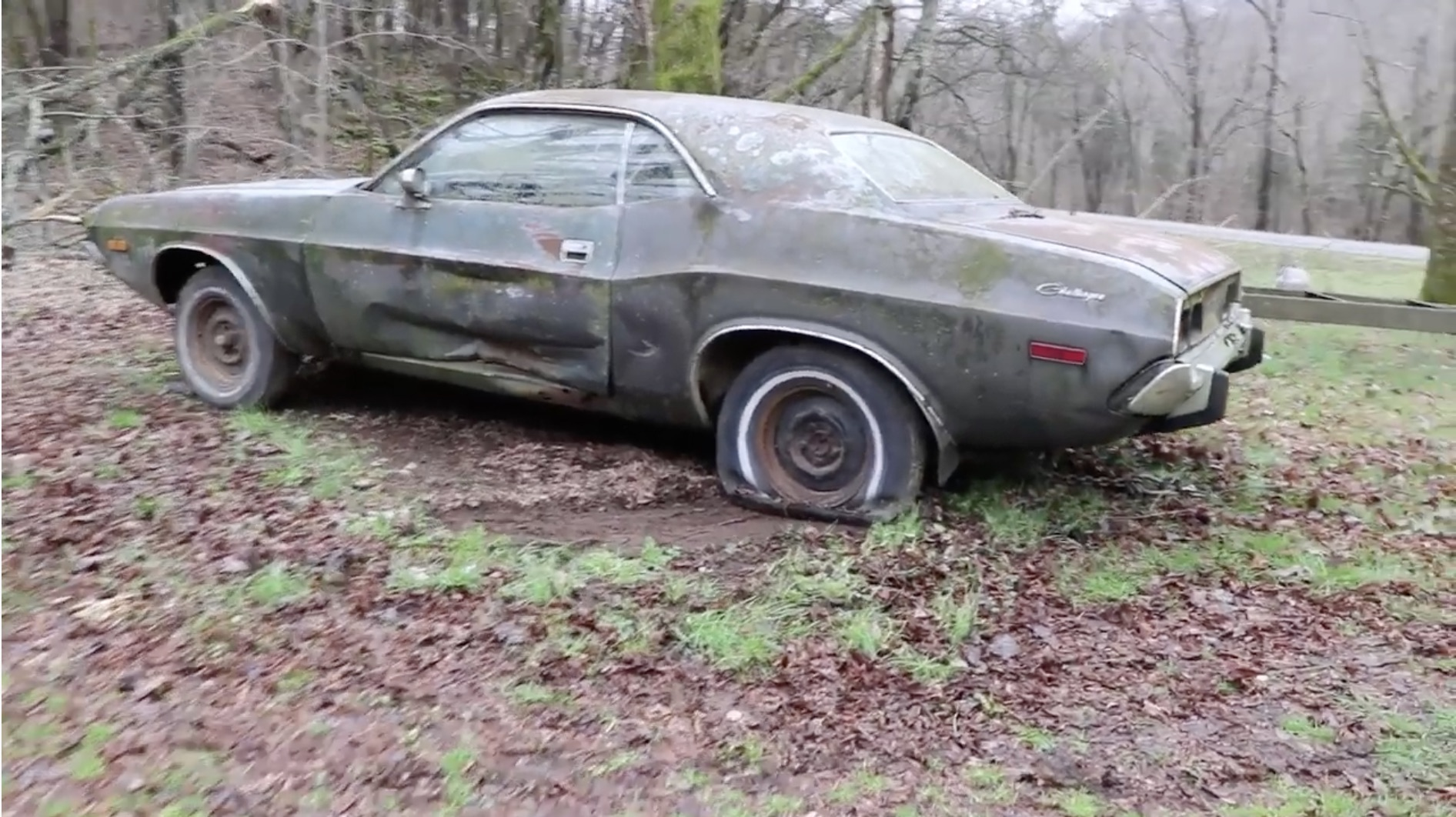 Image result for ABANDONED Dodge Challenger Rescued After 35 Years